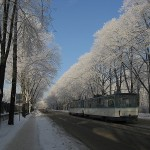 riga_winter_frost